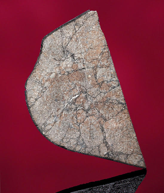 A specimen of the Peekskill meteorite revealing Peekskill's idiosyncratic shock veins which formed following a cataclysmic impact in interplanetary space.  Metallic inclusions are also in evidence. Modern cutting.